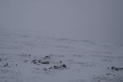 Февраль 2010 на Перевале Дятлова