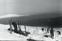 Поиски в 1959 году